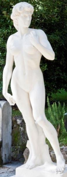 Pincio, David(a)