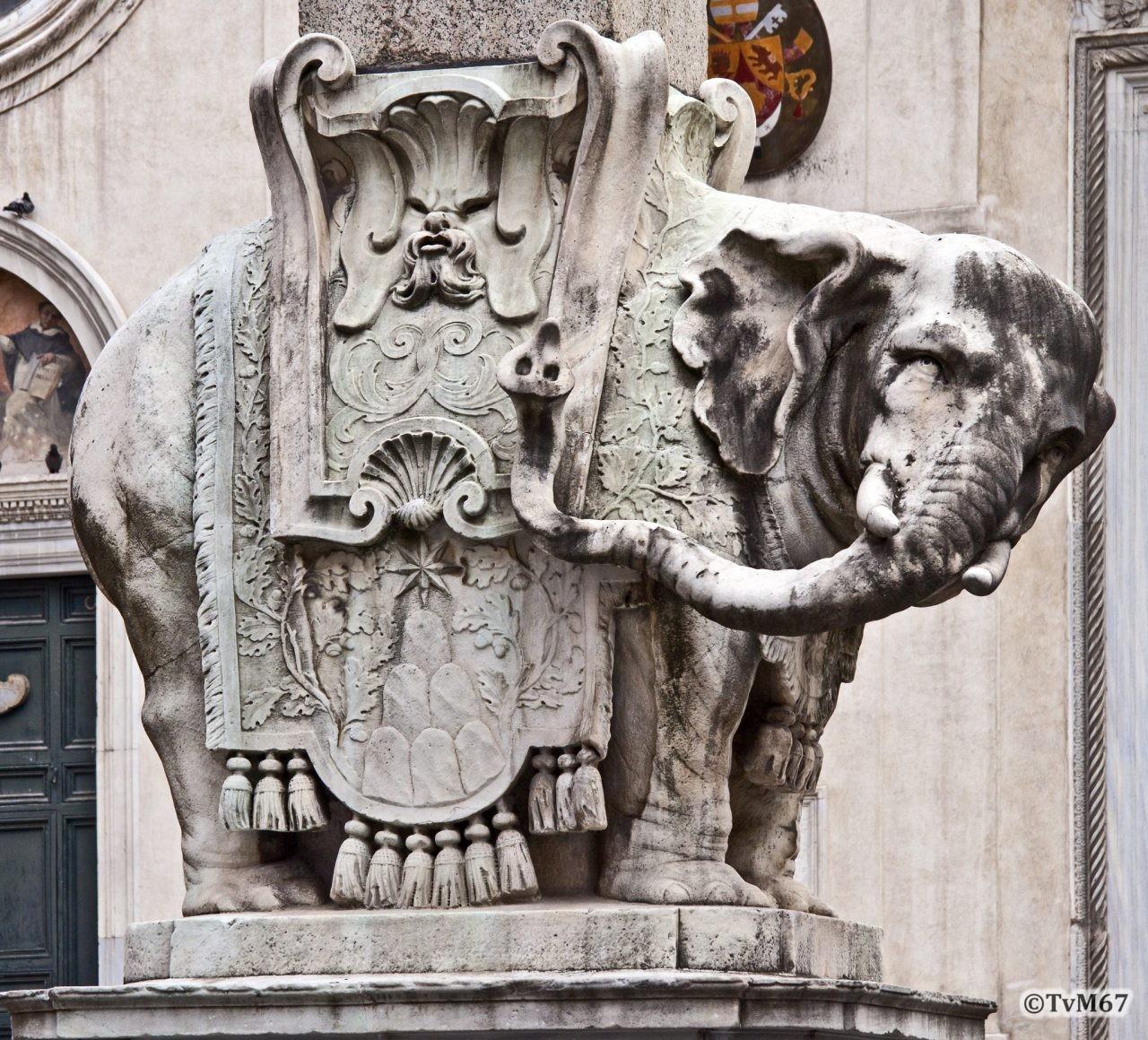 Roma, Piazza della Minerva, Bernini, Olifant, detail, 2011